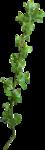 «pixelfairy_thankyouct» 0_5d7dc_9994e080_S