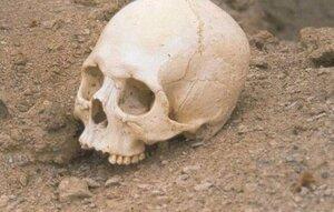 В Партизанске в подвале жилого дома обнаружили скелет человека