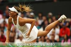 http://img-fotki.yandex.ru/get/5210/14186792.3b/0_d97c4_bae94a9f_orig.jpg