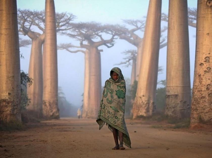 Лучшие фото недели отNational Geographic 0 141bd2 ccdba144 orig