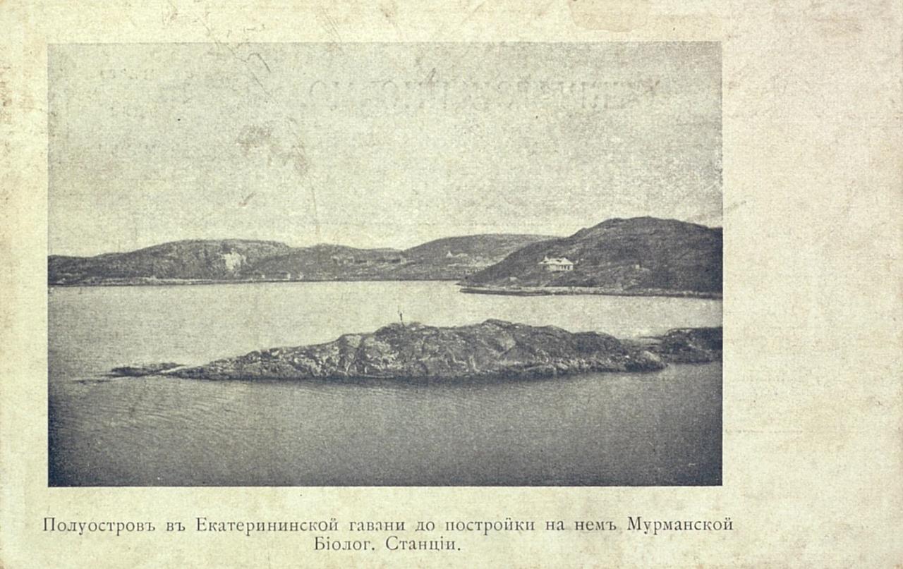 Полуостров в Екатерининской гавани до постройки на нем Мурманской Биологической станции