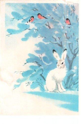 Новогодняя почтовая карточка с маркой.  Рисунок: заяц под елкой в лесу.  Выпуск: 1979 г. Художник В. Каневский.