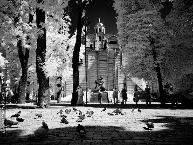 Золотые ворота и памятник Ярославу Мудрому