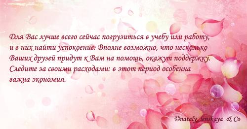 Что сказали мне розовые лепестки...