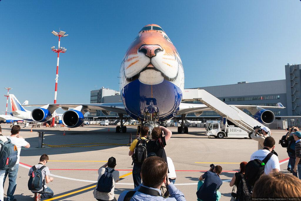 B747 Transaero «Полосатый рейс»