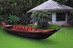 2011 Тайланд, Паттайя