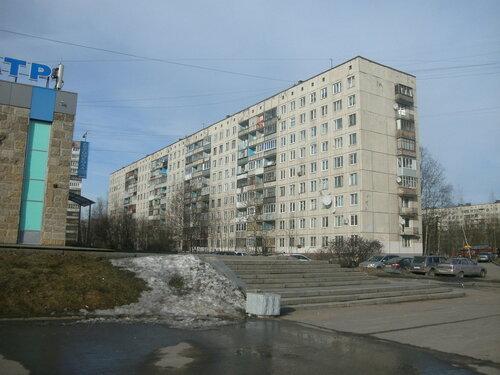 ул. Подвойского 40к1