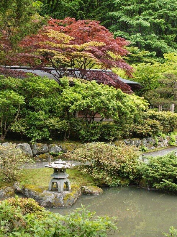 Arboretum. Japanese garden