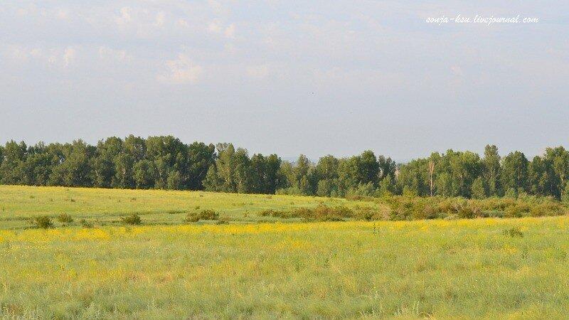 оренбургский пейзаж