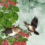 «птицы наблюдают часами»  0_676fe_5ceb9ff6_S
