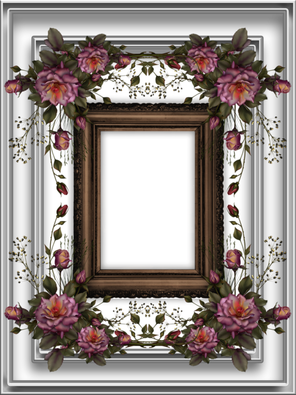 floral_boarder_by_collect_and_creat-d83eixv.png