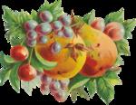 """После сушки готовую вышивку деликатно...  Схемы автора  """"Marina22 """".  Схема вышивки  """"Груши и ягоды """" ."""