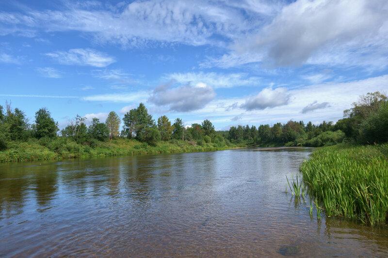 Через реку вброд по грибы