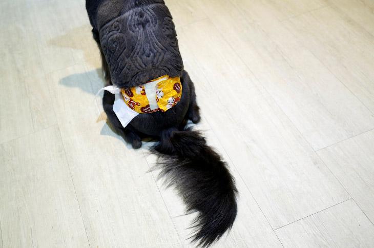 2. Прическа — плюшевый медведь. (Фото Tyrone Siu | Reuters):