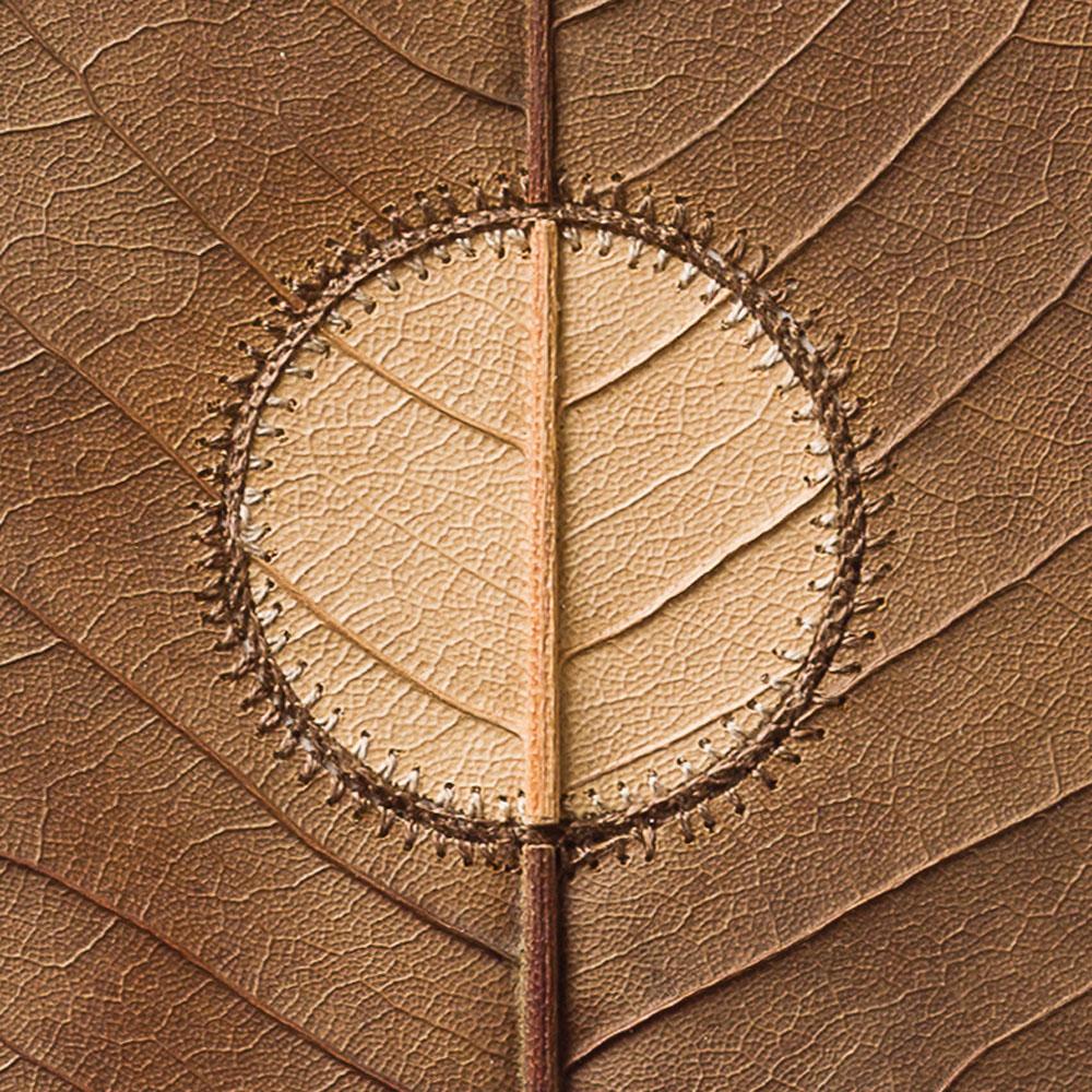 Inner Circle, detail.