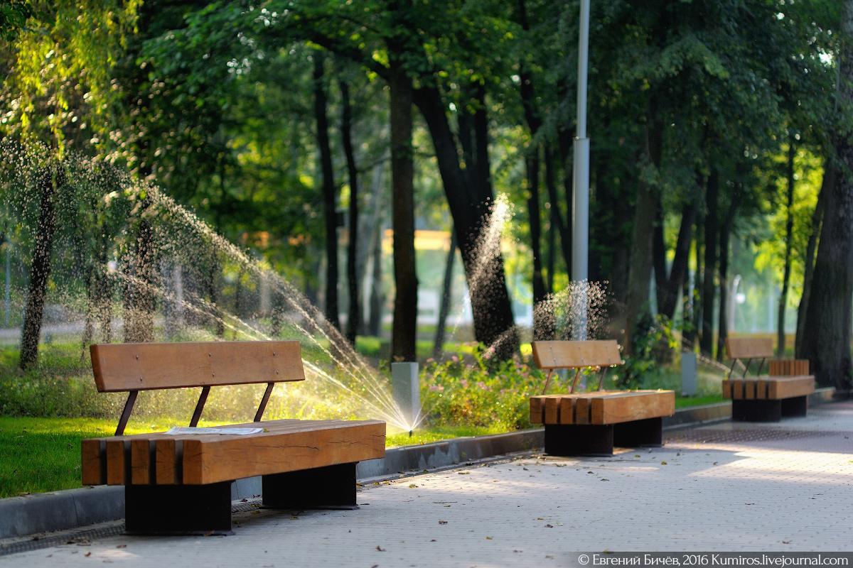 парк динамо воронеж фото