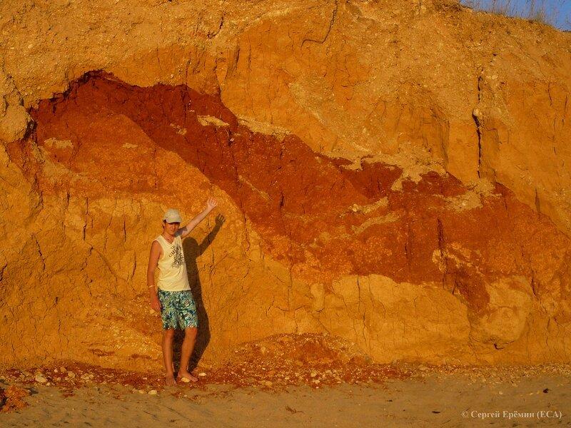 Отпечаток ископаемого крокодила в глинах севастопольского побережья