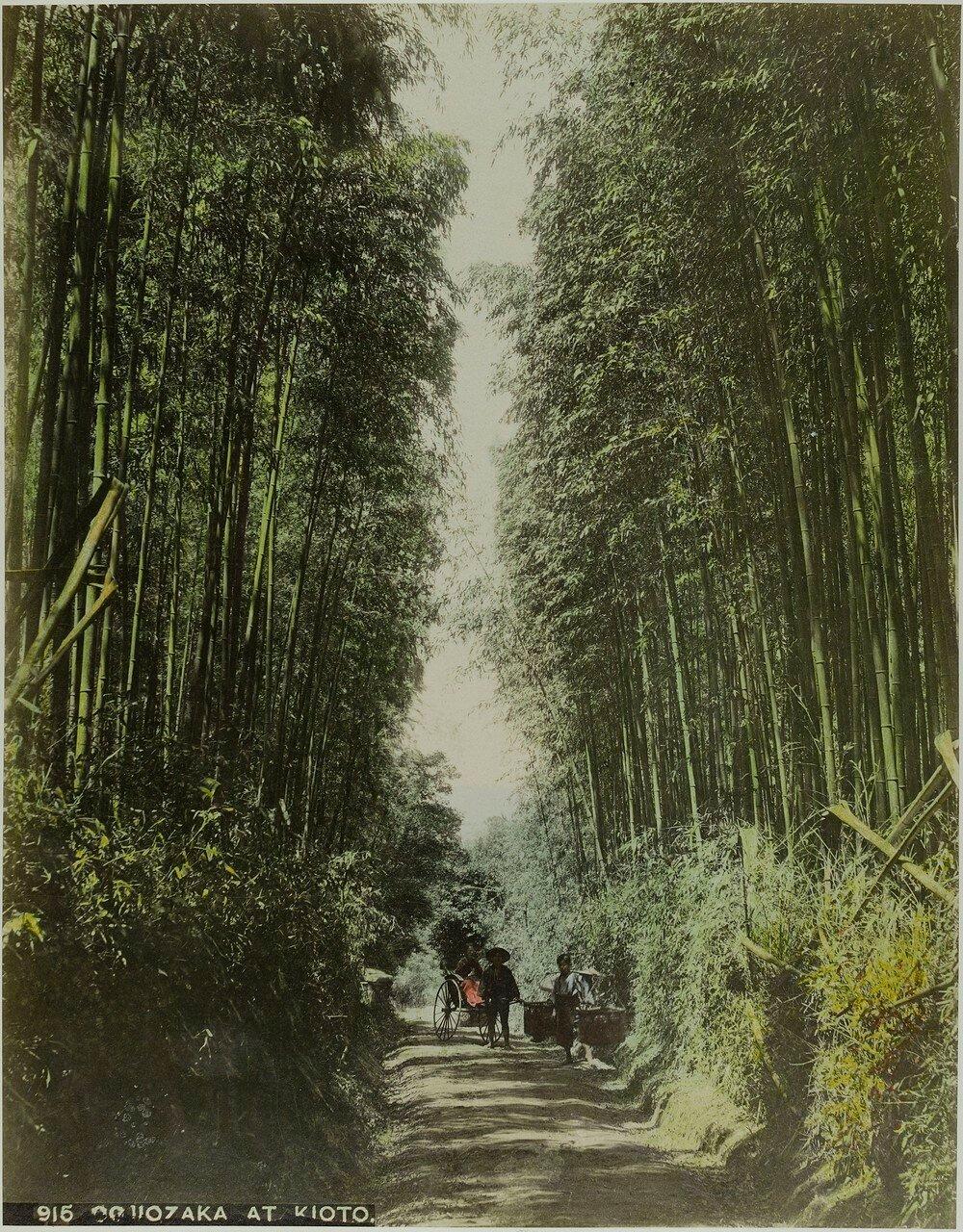 Окрестности Киото. Годжё