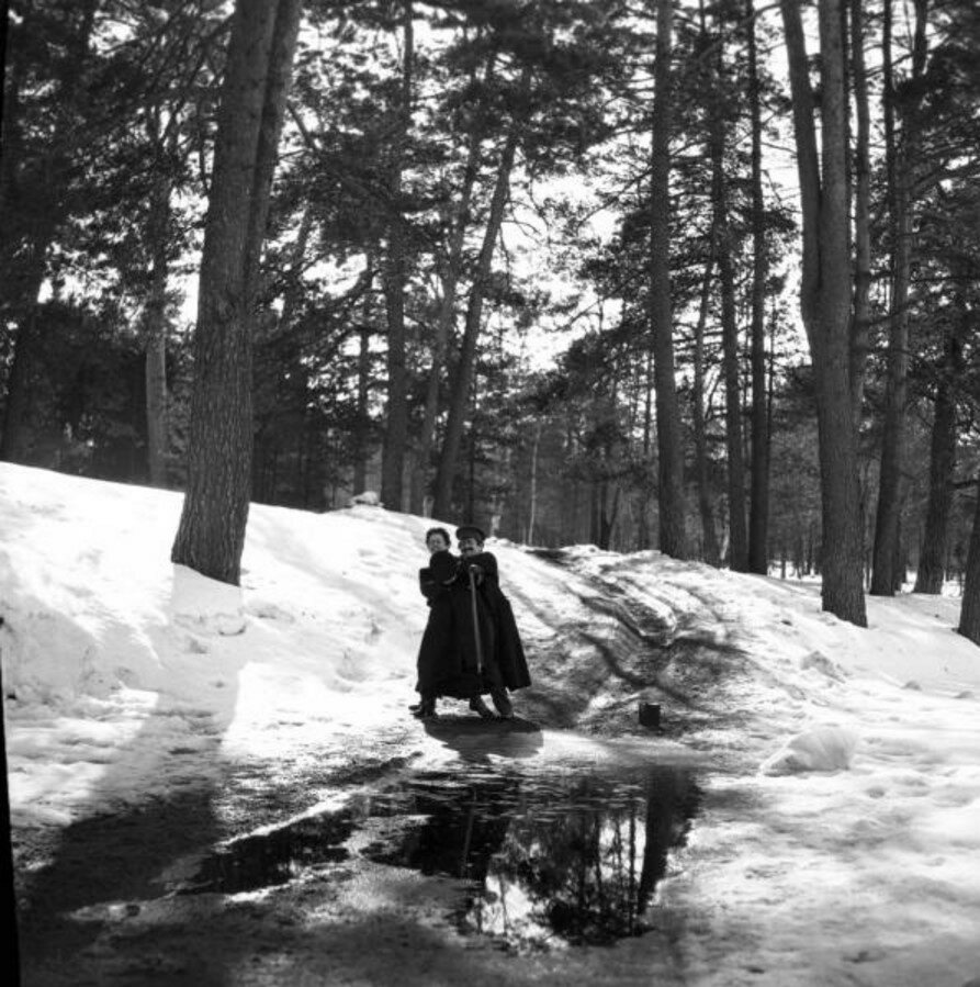 1904. Прогулка в Сокольники. «Саша старается сбросить Володю в прорубь»