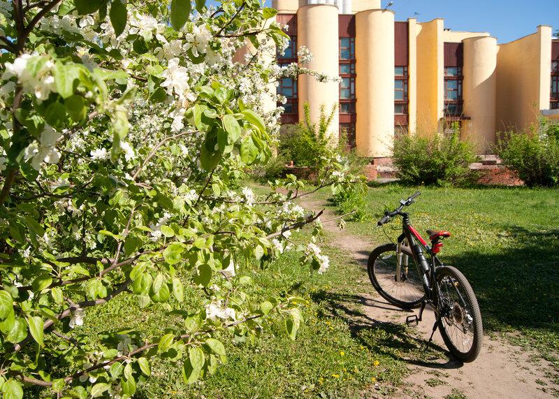 Велосипедные настроения
