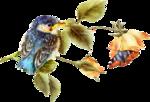 Birds (Птицы)