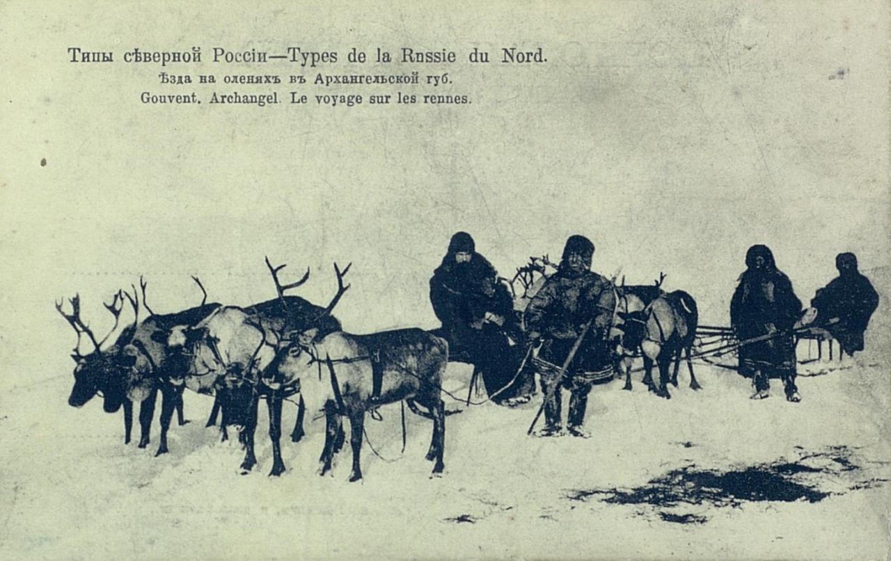 Типы северной России. Езда на оленях в Архангельской губернии