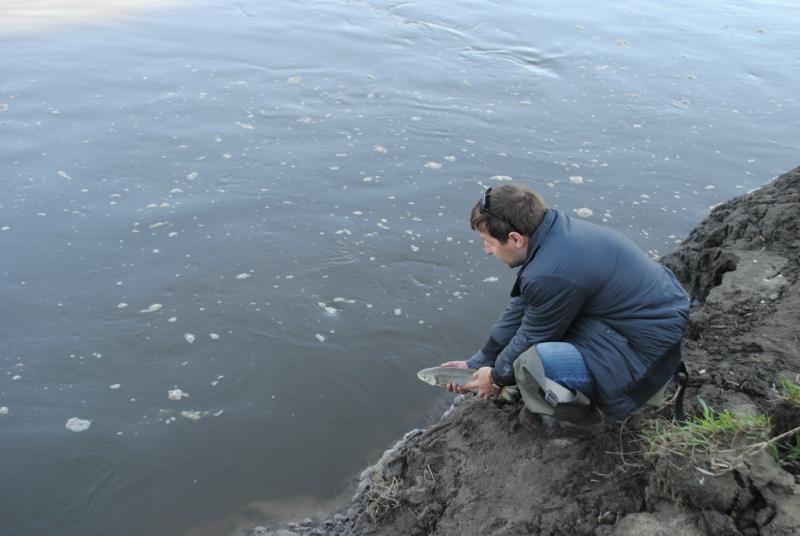 новоживотинное рыбалка