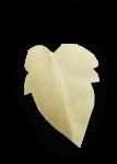 natali_design_apple_leaves21-sh.png