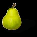 natali_design_apple_pear1-sh.png