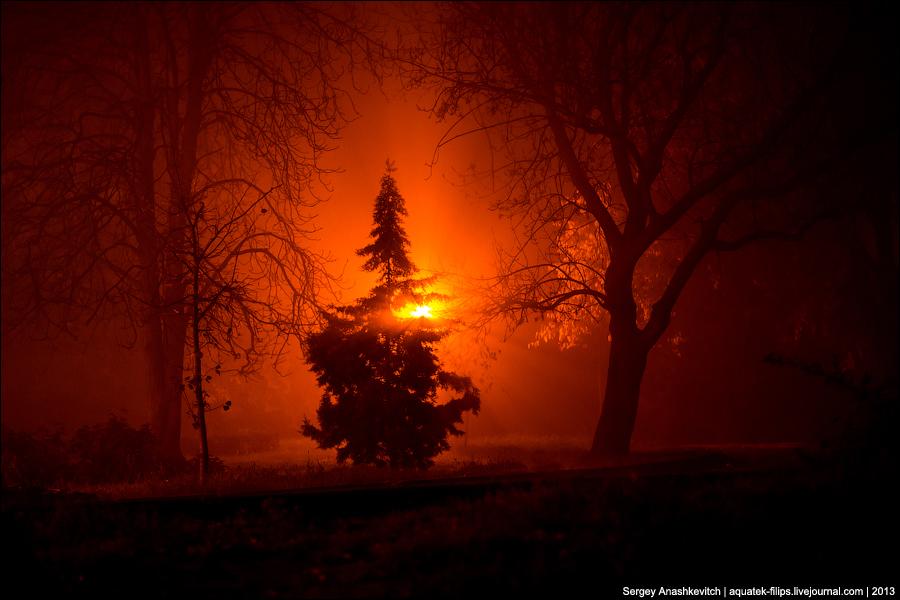 Туман в Севастополе
