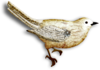 catherinedesigns_R-C23_Bird1_sh.png