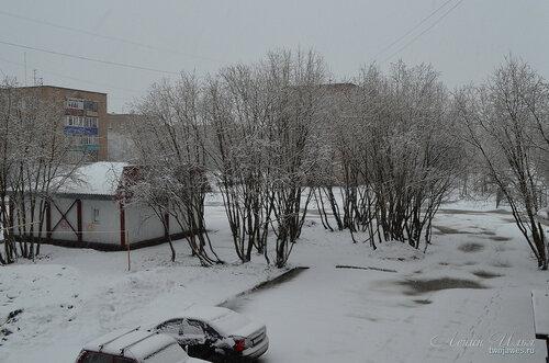 Фото города Инта №8310  24.04.2016_04:21