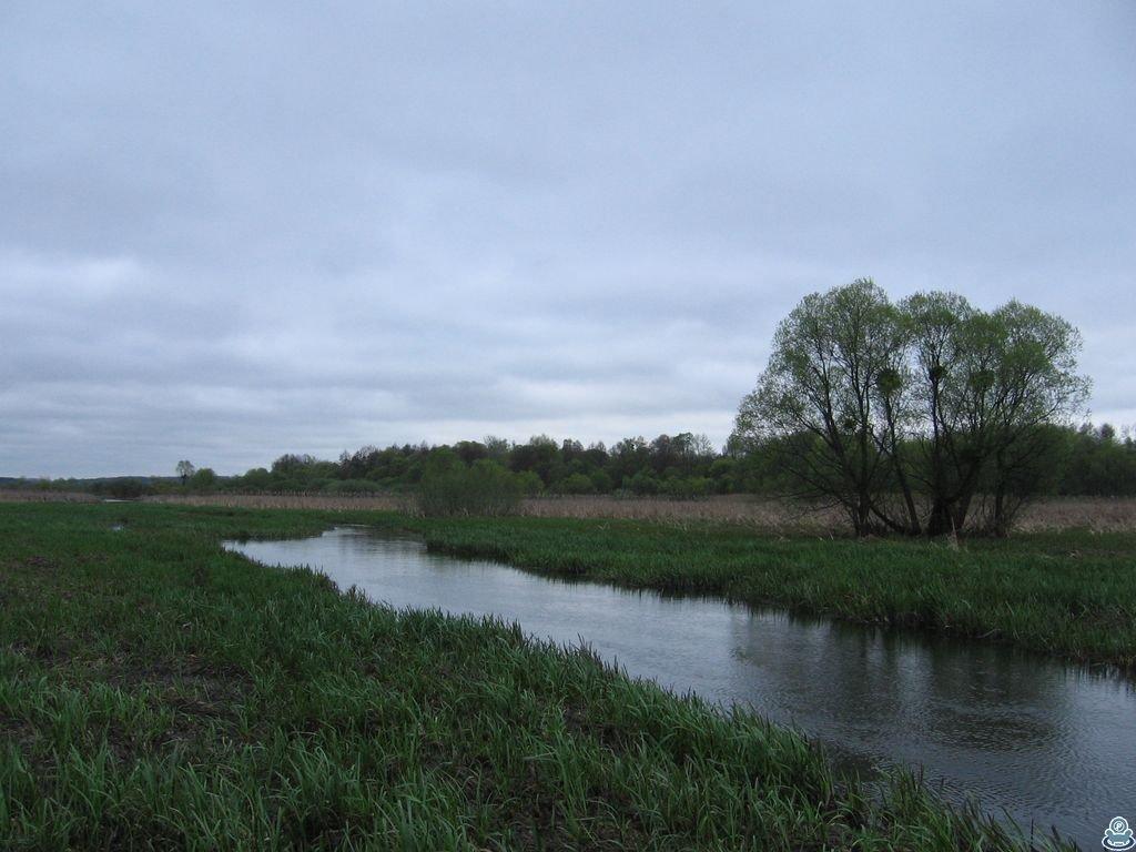 Весенняя река Боромля