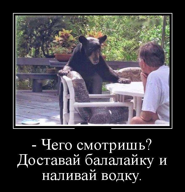 Медведь, водка и балалайка