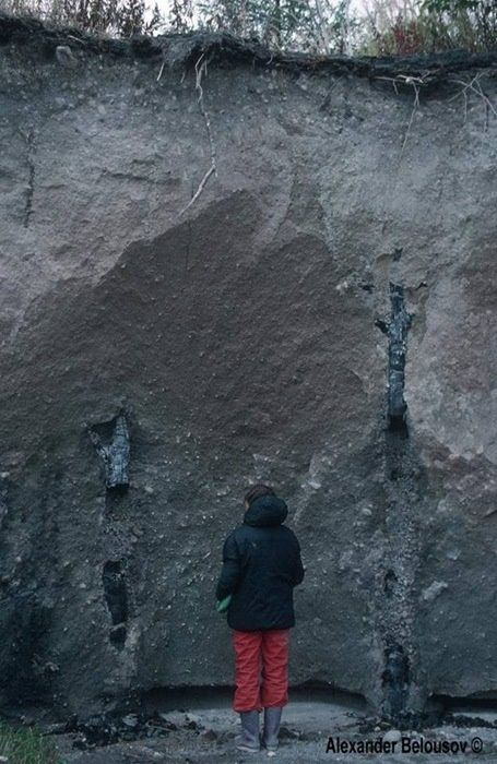Как камчатский вулкан Шивелуч зашевелился (фото)