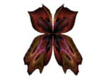butterfly-9-bd-19-12-13.png