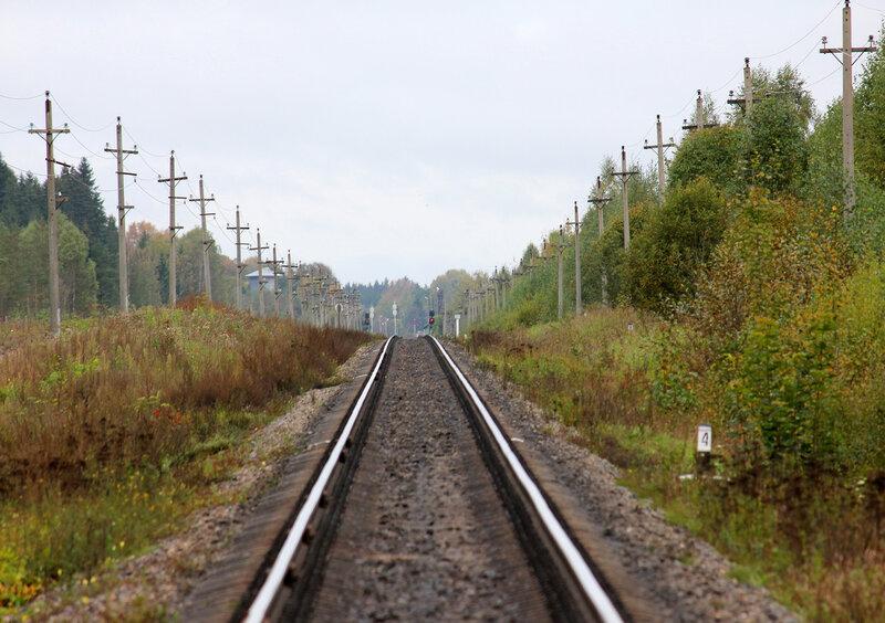 Локальный экстремум перегона на 357 км 8 пк перегона Подсосенка - Земцы. Место прохода гипотетической линии Смоленск - Великий Новгород