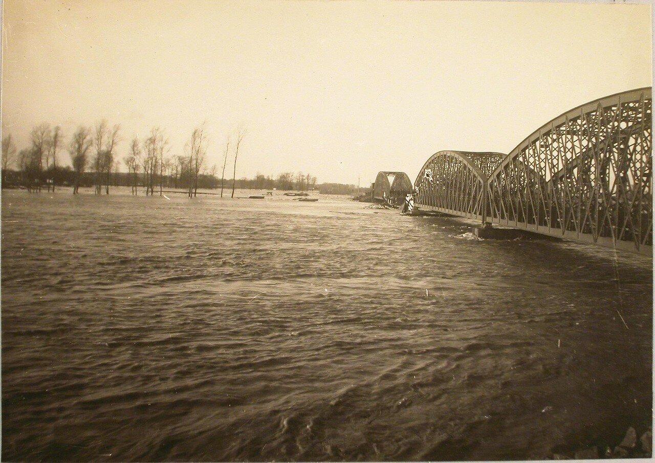117. Река во время разлива. Галиция. ст. Трынча