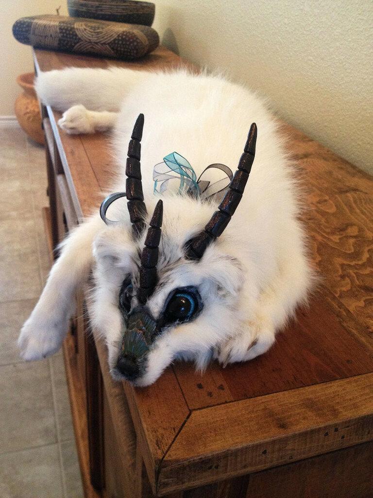 fantasy_tundra_fox_plush_by_darkangellord69-d67b552.jpg