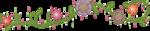 lliella_HHoppity_floralborder.png