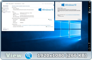 Windows 10 x64 Home v1607.393.693 and Office 2016 x64 20.2.2017