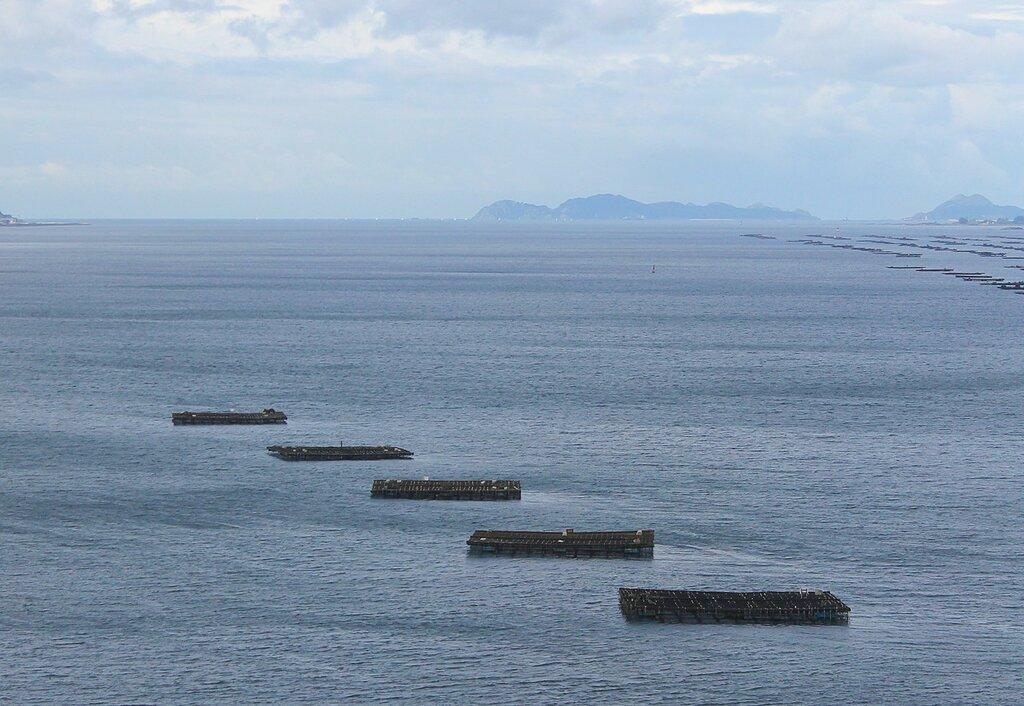Залив Риа-де-Виго