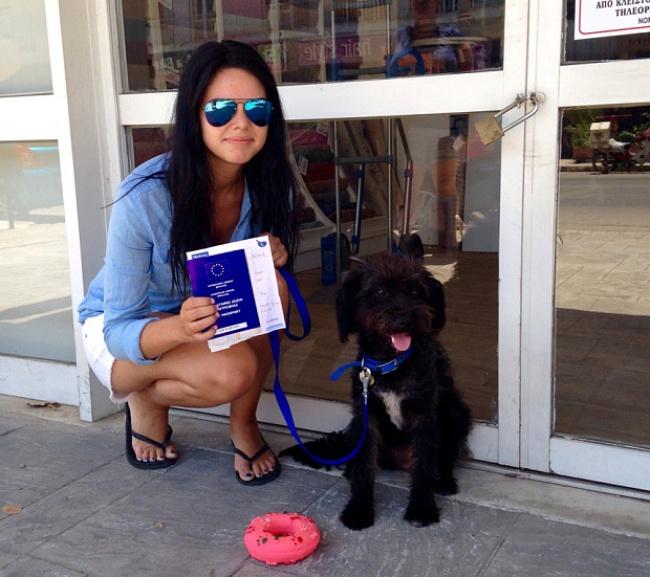 Эта бродячая собака защитила Джорджию Брэдли отнападения. Аровно через 7дней после того, как