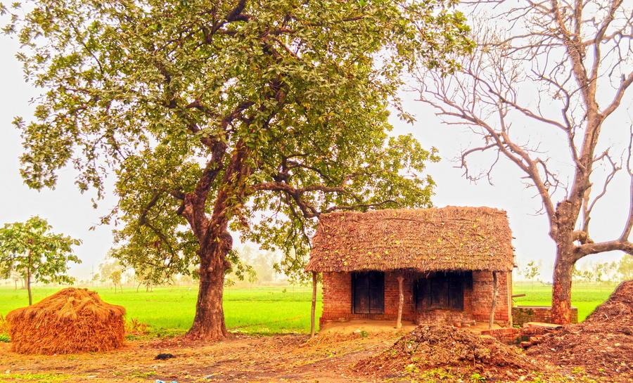 12. Старая деревенская избушка, Индия.