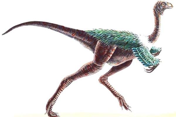 Некоторые динозавры жили стаями— Ученые