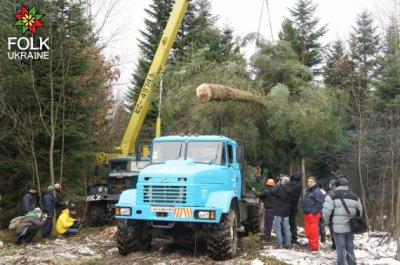 ВКиеве установили 26-метровую главную елку Украины