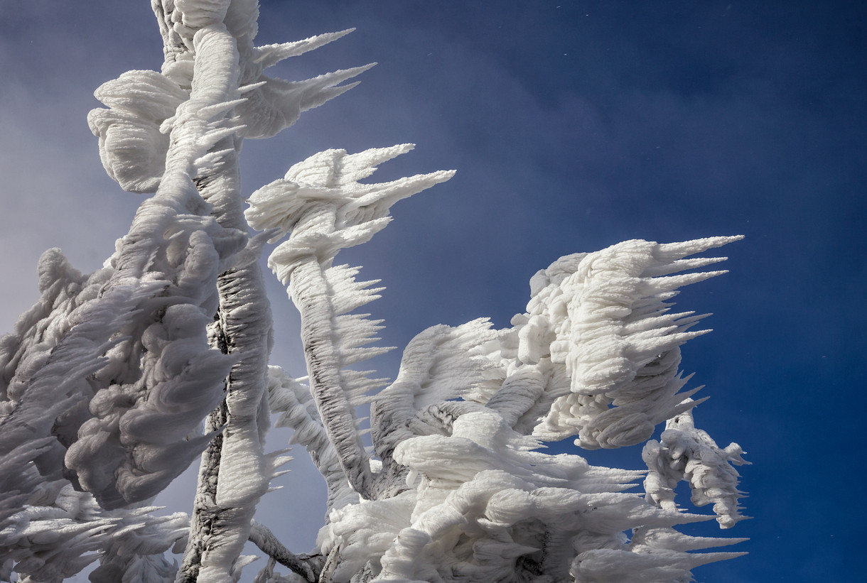 Spectacular Ice Formations Atop a Windswept Mountain in Slovenia