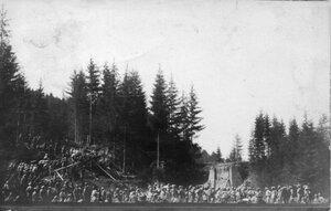 1915. Большая группа военных в лесу