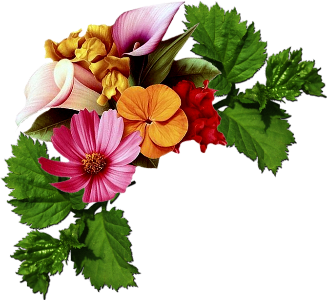 Beautiful Flowers #9 (92).png