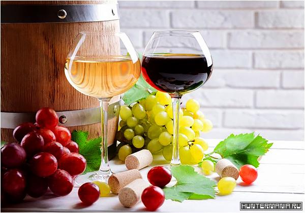 Вино. Факты и мифы об известном напитке
